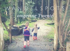 Wandelspots Twente VETTT