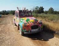 Ibiza zonder kinderen