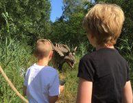 Dinopark Twente
