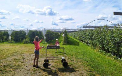 Fruit plukken Bij Twentefruit in Noord-Deurningen